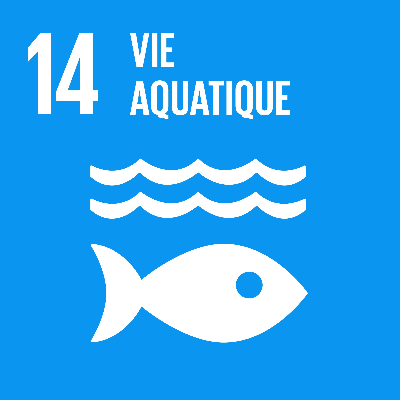 ODD14 Vie aquatique