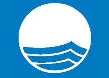 Logo Blue Flag